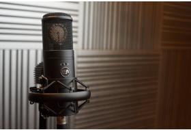 Незвичайний ламповий мікрофон WARM AUDIO WA-8000