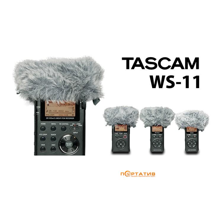 Tascam WS11