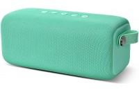 Fresh N Rebel Bold L Waterproof Bluetooth Speaker Peppermint