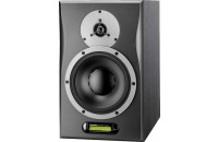 Dynaudio AIR 6 Master D6 (1 шт.)
