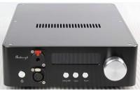ЦАПы Audio-gd NFB-29