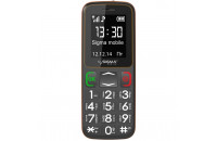 Мобильные телефоны Sigma mobile Comfort 50 Mini3 Grey-orange